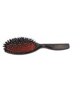 Cushion brush Porcospino